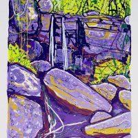 Greg Mallyon  - Waterfall, Lamington National Park