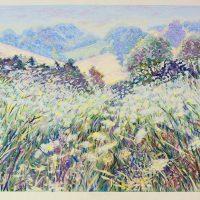 Caroline Sykes  - Moring field