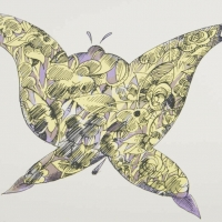 teapot butterfly